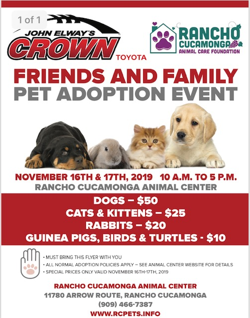 John Elway Toyota >> John Elway S Crown Toyota Pet Adoption Event City Of