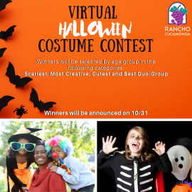CSD-Virtual Costume Contest
