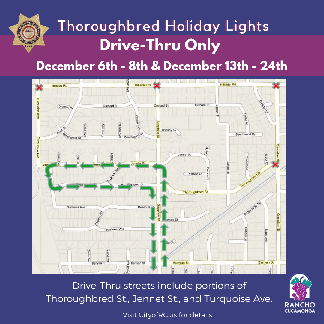 Thoroughbred Holiday Lights